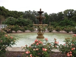 The Rose Garden at Leu